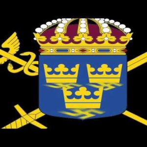 """The Bristles – """"Sweden, Where God Only Comes to Sh*t"""" Heptown Records"""