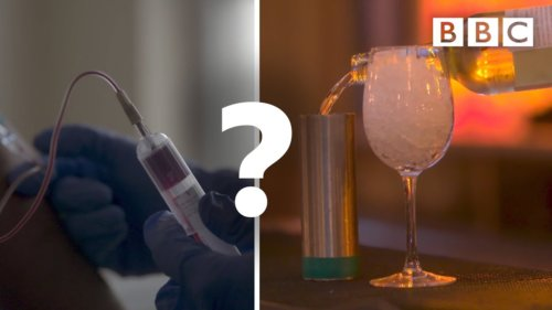 How does alcohol affect your immune system?